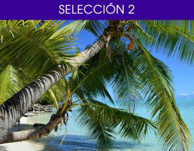 Selección 2